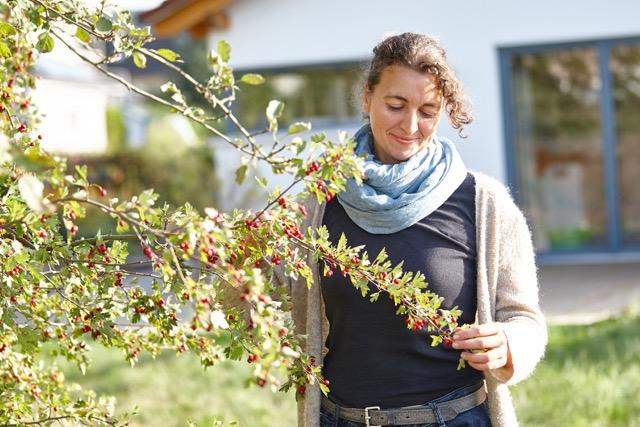 Andrea Farnung